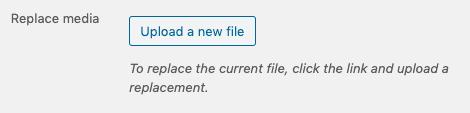 upload a new file