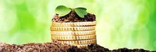 sprouts growing out of coins in earth